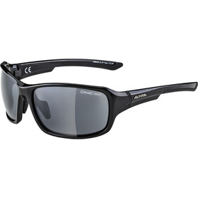 Alpina Lyron Glasses black-grey